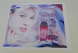 Flag布のバナーが1.6m(5フィート)エコソルベントプリンタで印刷されたWER-ES160 4
