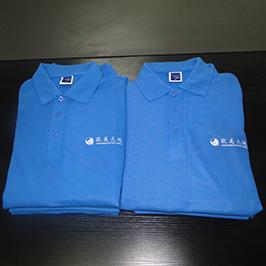 A3のTシャツプリンタWER-E2000Tによる印刷サンプルをカスタマイズしたポロシャツ